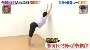 壁体操正面
